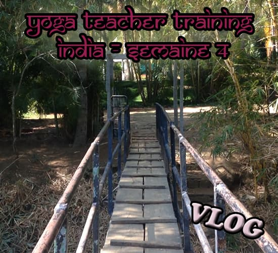 Samyak Yoga teacher training - Fin de l'aventure